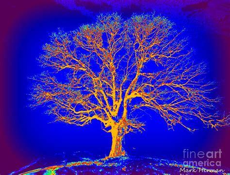 glow in the painting tree artist tree glow painting by herman