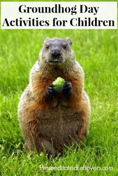 groundhog day en francais 17 best images about the amazing marmot on