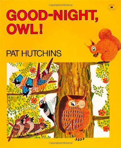 owl picture books owl book