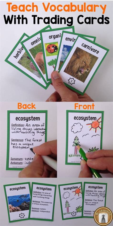 make vocabulary cards trading cards pictures and third grade on