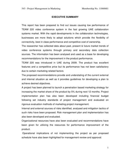project management in marketing final report