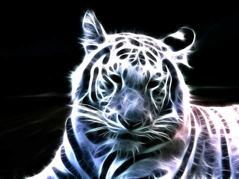light animals animals tigers fractalius light painting wallpapers