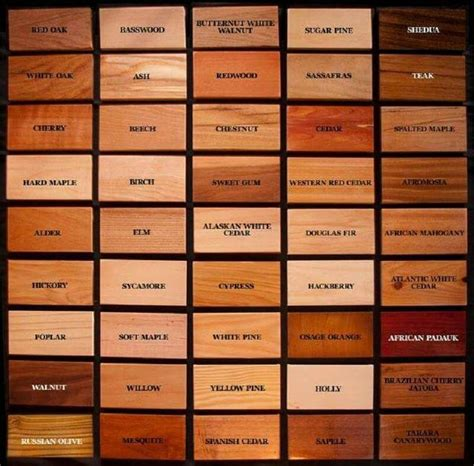 types of woodwork 25 best ideas about types of wood on woodwork