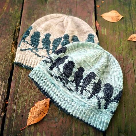 rivalry knit passerine hat patterns and ravelry on