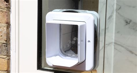 large cat doors interior doors large pet cat door flap patio entry entrance cat flaps in