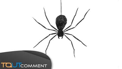 draw a spider comment dessiner une araign 233 e