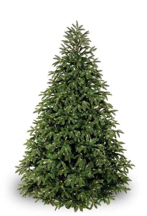 frasier fir artificial tree fraser fir prelit tree lights etc