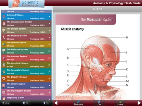 how to make anatomy flash cards anatomy physiology flash cards app for iphone
