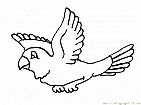parrots are flying coloring page free parrots coloring