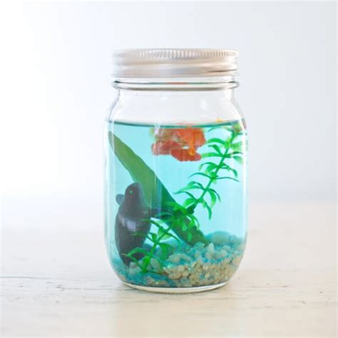 craft projects with jars 50 diy jar crafts diy projects for