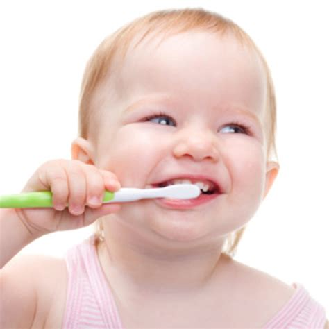 teething for babies your baby at 8 months baby development bounty