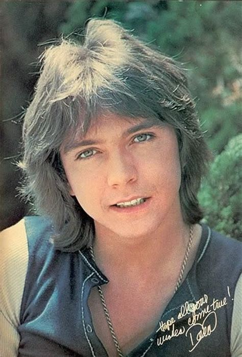 much is 1970s shag haircuts 216 best images about david cassidy on pinterest shirley