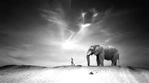 with pictures ten walls walking with elephants original mix