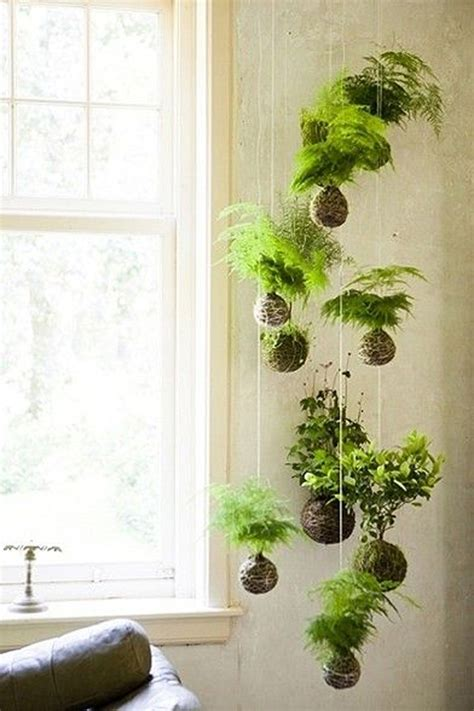 indoor hanging garden ideas 20 beautiful kokedama string garden ideas home design