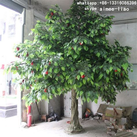 trees for sale q111234 ornamental fruit trees for sale decorative bonsai