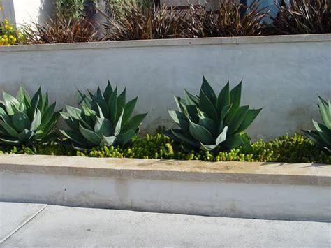 concrete garden walls concrete retaining walls landscaping network