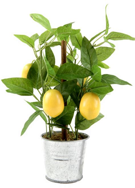 plante artificielle citronnier en pot 4 fruits 26cm vert jaune santex