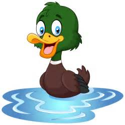 cute duck cartoon in water