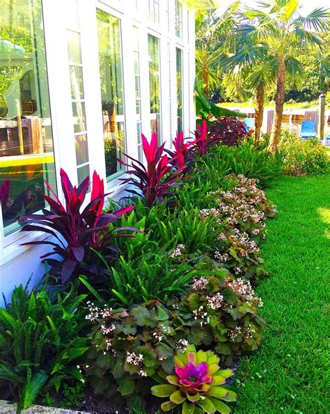 tropical landscaping ideas 25 best ideas about florida landscaping on