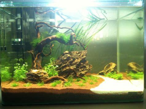 mon scaper s tank 50l aquascaping complete plus cr 233 ation d aquarium eau douce aqua