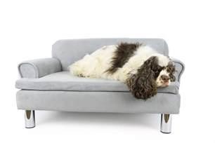 canap 233 pour chien zolia liloe panier chien et corbeille