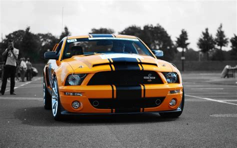 Car Wallpaper Front View by Shelby Gt500 Yellow Car Front View Wallpaper Cars