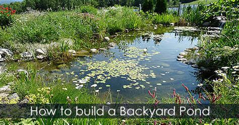 building backyard pond how to build a garden pond pond building guide and tips
