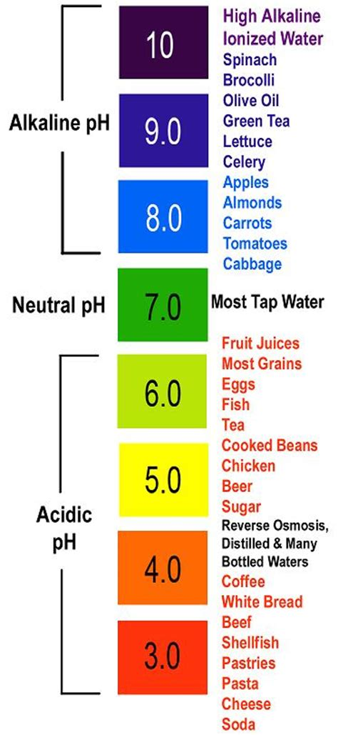 FRUGAL FITNESS ®: How Acidic & Alkaline Foods Affect Your Body