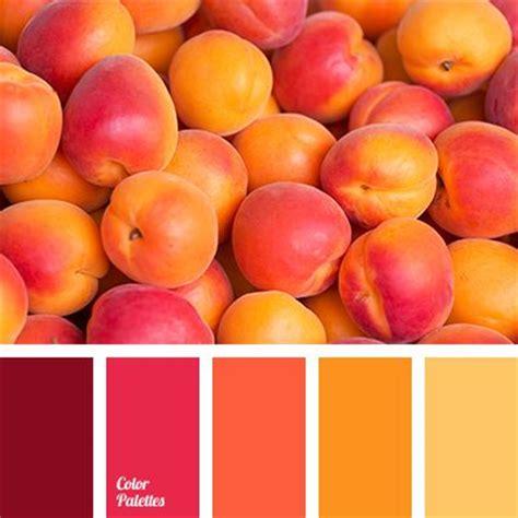 orange and color 25 best ideas about orange color on orange