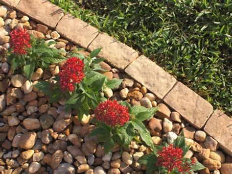 rock edging for gardens vallas met 225 licas para rodear las islas de jard 237 n