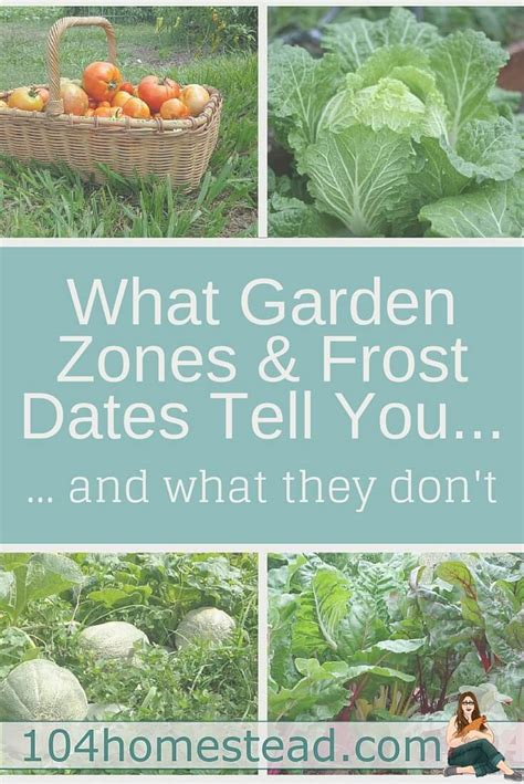 vegetable gardening zones what gardening zones tell you what they don t