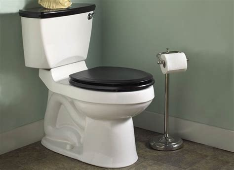 best toilet buying guide consumer reports