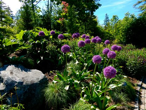 botanical gardens maine boothbay maine yep it s the harbor getaway mavens