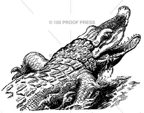 100 proof press rubber sts 4864 corner crocodile