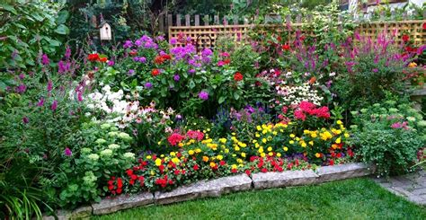 garden flowers perennials flowers annuals perennials in raleigh nc norwood road