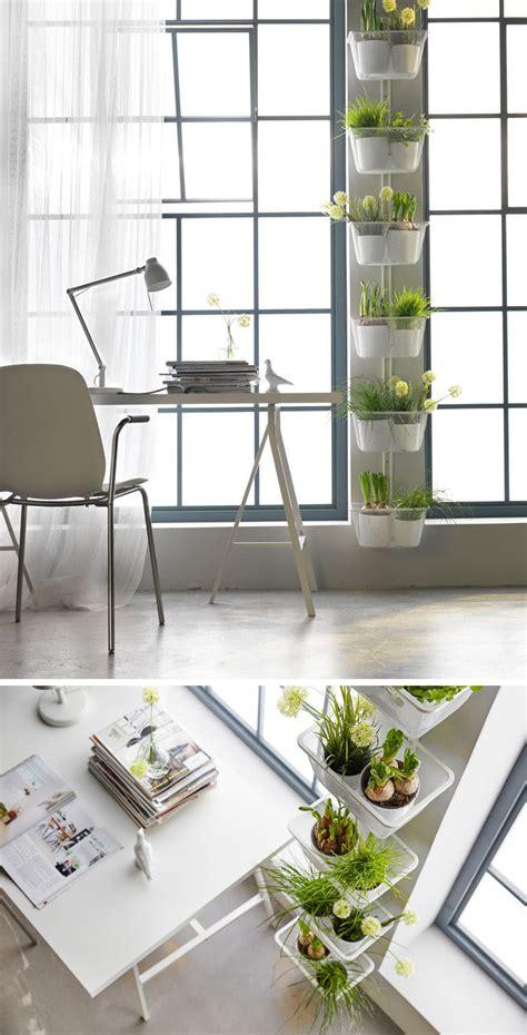 indoor wall garden indoor garden idea hang your plants from the ceiling