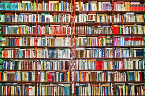 pictures of books on shelves books unread