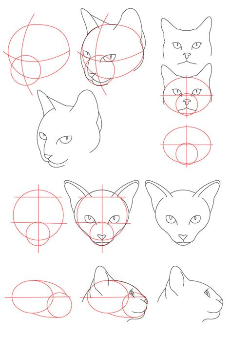 cat tutorial cat tutorial by perianardocyl on deviantart