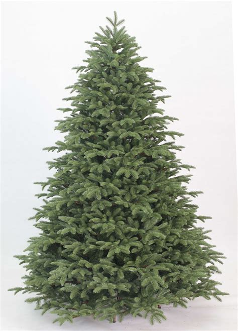 cheap unlit artificial trees lizardmedia co