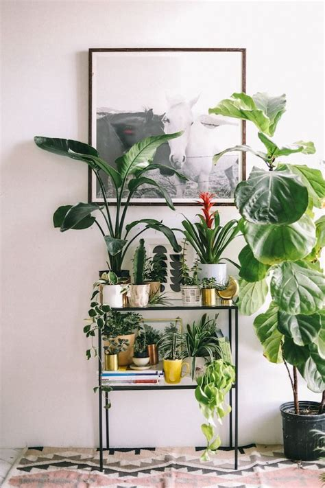 outfitters home decor best 25 indoor plant stands ideas on indoor