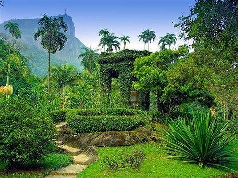 botanical garden de janeiro the world s most beautiful botanical gardens photos
