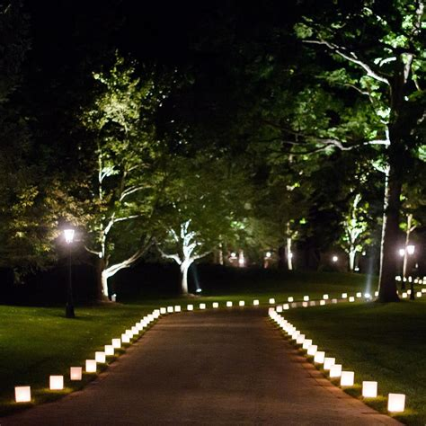 outdoor tree lights 31 outdoor lighting designs ideas design trends