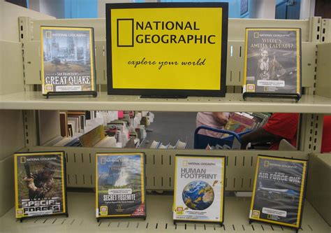 picture book display ten tips for better book displays 658 8 practical