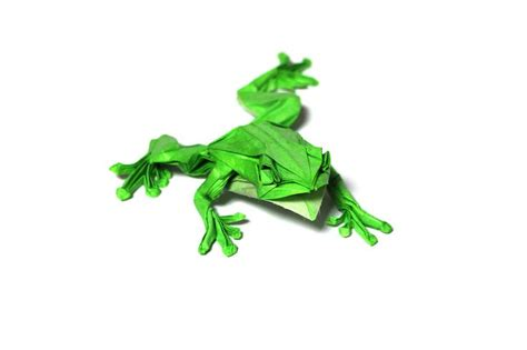 origami tree frog 262 best october 2016 origami images on