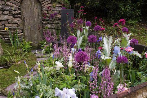 garden border plants flowers garden border in lavender pastel colors plant flower
