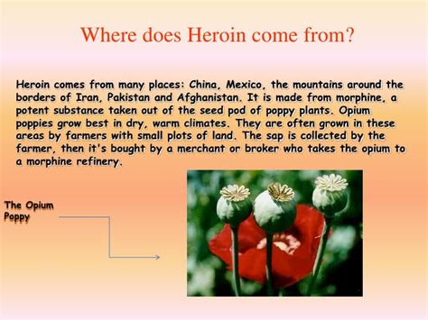where do come from heroin 2