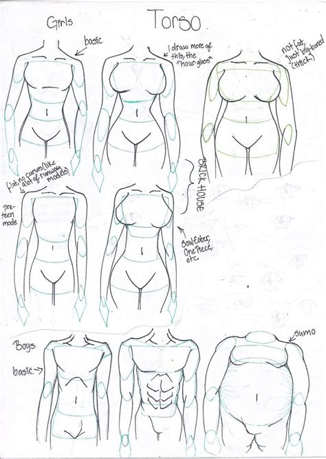 how to draw bodies how to draw different types by takaya ame on deviantart