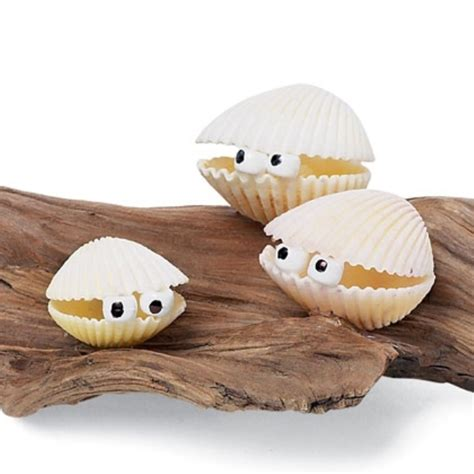 shell craft for 10 seashells crafts to make at home kidsomania