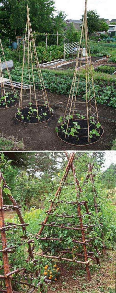 amazing vegetable gardens 22 ways for growing a successful vegetable garden