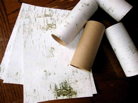 birch tree paper for crafts snow bird storytime sturdy for common things